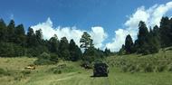expedicion volcan paricutin opt