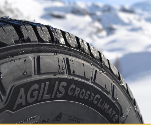 автомобильные agilis crossclimate раздел шины