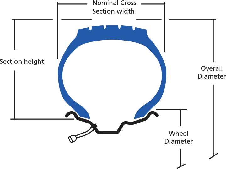 tire aspect ratio ; read a tire ; tire cut view